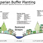 South Kent School Center for Innovation: Stream Restoration Plantings